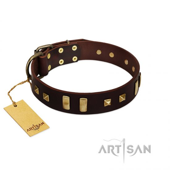 """Choco Delight"" FDT Artisan Brown Leather Belgian Malinois Collar with Old Bronze-like Plates and Studs"