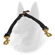 Easy Handling of 2 Belgian Malinois with Leather Coupler