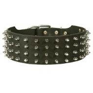 Leather Belgian Malinois Collar with Spike Decoration