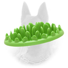 Innovative Plastic Belgian Malinois Feeder for Healthy Eating
