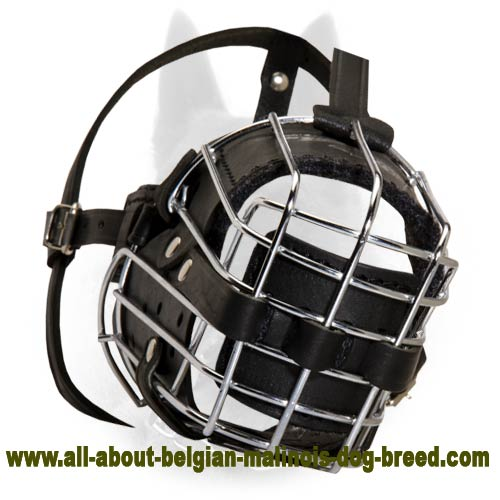 'No Mash' Basket Wire Dog Muzzle Perfect for Belgian Malinois