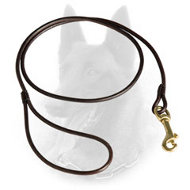 Perfect Belgian Malinois Leather Leash for Dog Show Performing