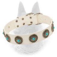 Noble White Belgian Malinois Collar with Blue Stones Decoration