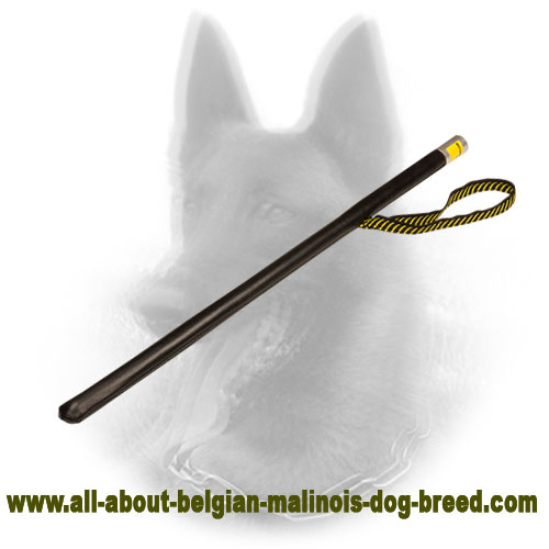 Agitation Belgian Malinois Stick for Training