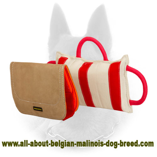 Superable Belgian Malinois Bite Pillow with Durable Cover