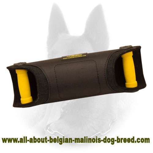 Professional Belgian Malinois Bite Developer of Firm Material