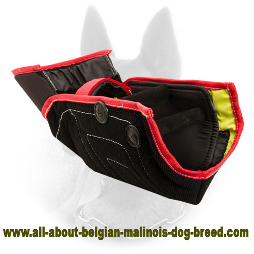 Reliable Belgian Malinois Bite Sleeve - Train with Comfort