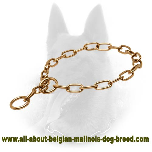 Curogan Belgian Malinois Fur Saver of Best Quality