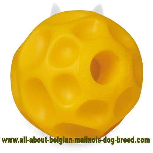 Best Belgian Malinois Tetraflex Ball for Interactive Kiddle Dispensing