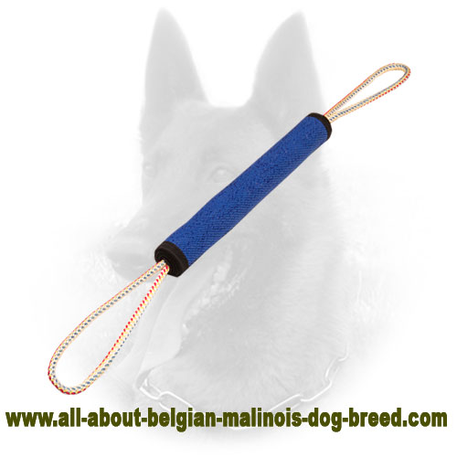 Firm Belgian Malinois Bite Roll of Hypoallergenic Material