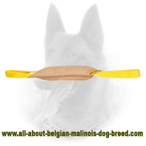 Leather Belgian Malinois Bite Tug with Comfy Handles