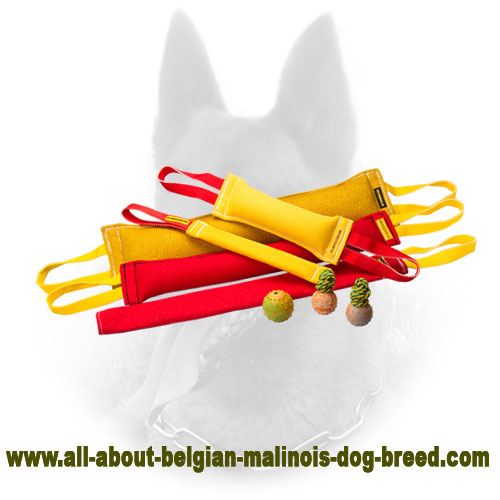 High Quality Belgian Malinois Bite Tugs Set for Training