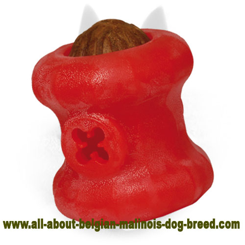 Safe Belgian Malinois Rubber Kibble Dispenser