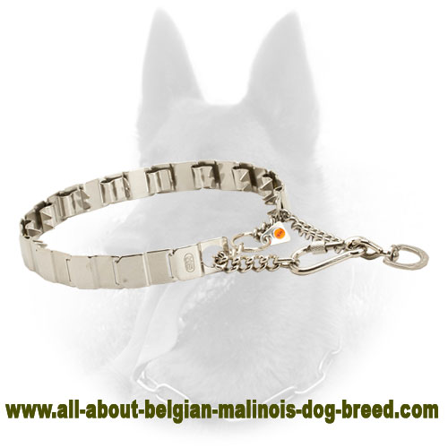 Best Belgian Malinois Pinch Collar for Efficient Training