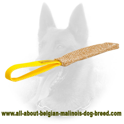 Jute Belgian Malinois Bite Tag with Strong Hand Stitching