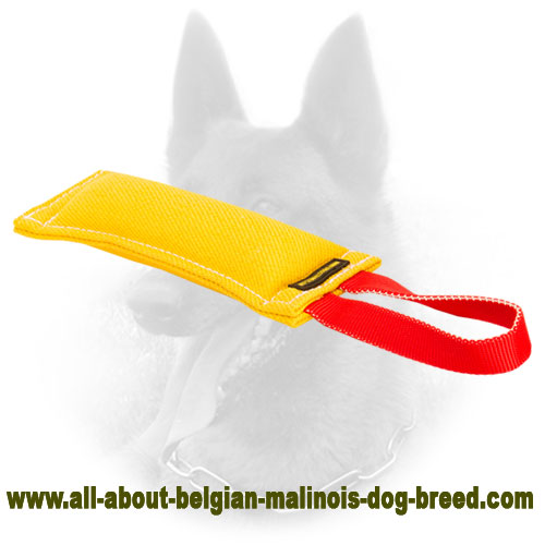 Durable Belgian Malinois Bite Tug of Safe Material