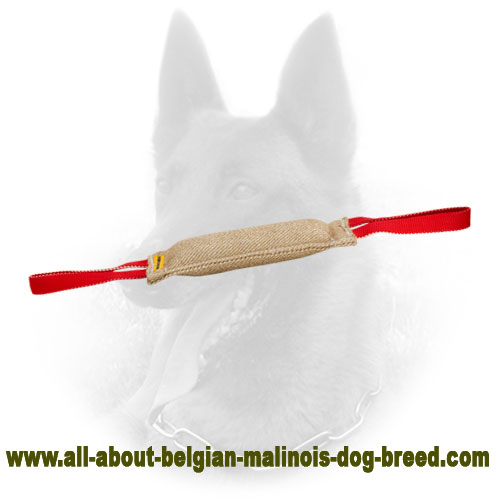 Safe Belgian Malinois Jute Bite Tag for Interesting Puppy Training