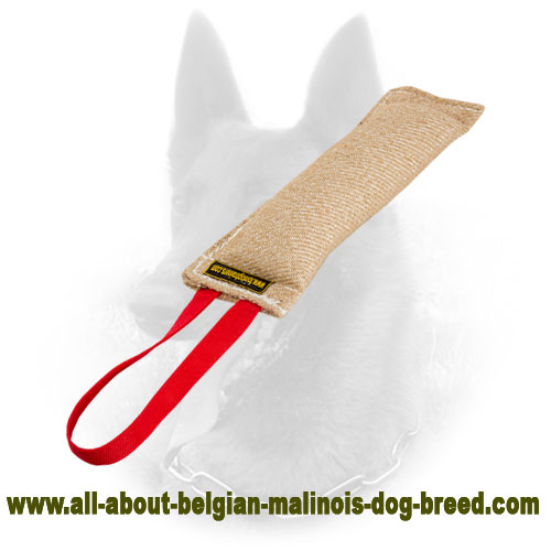 Best Belgian Malinois Jute Bite Tag for Efficient Puppy Training