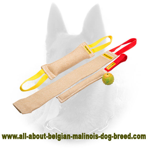 High-End Belgian Malinois Bite Tugs Set with Great Present