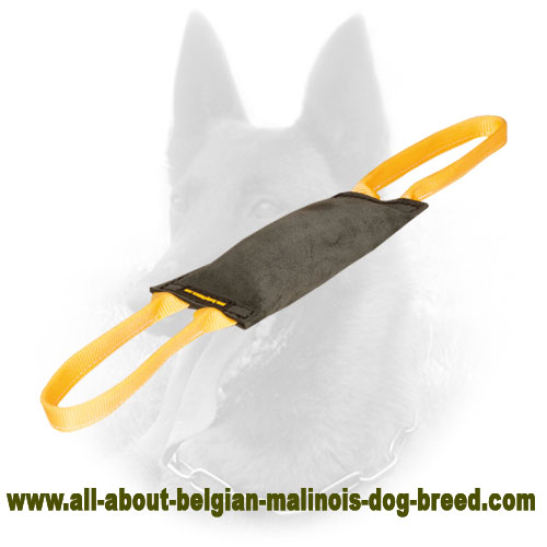 Leather Belgian Malinois Bite Tug with Firm Stitching
