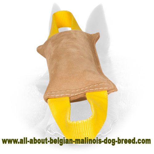 Well Stuffed Belgian Malinois Bite Tug of Natural Leather