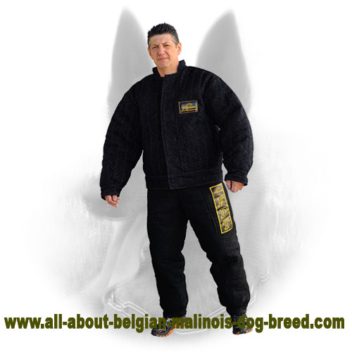 Lightweight Belgian Malinois Protection Bite Suit for Everyday Training