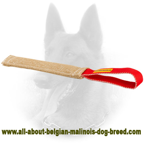 Puppy Belgian Malinois Bite Tag of Jute Material