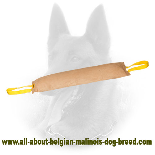 Safe Belgian Malinois Bite Tug of Leather Material