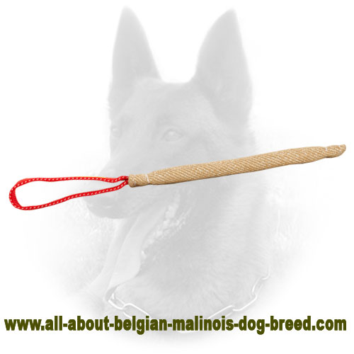 Jute Belgian Malinois Bite Tag of Pocket Size