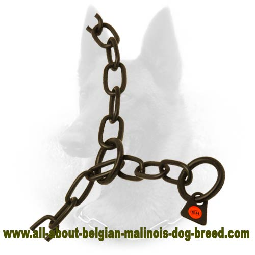 Multimode Belgian Malinois Metal Collar of Safe Material
