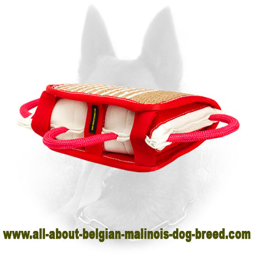 Durable Belgian Malinois Bite Pillow for Efficient Training