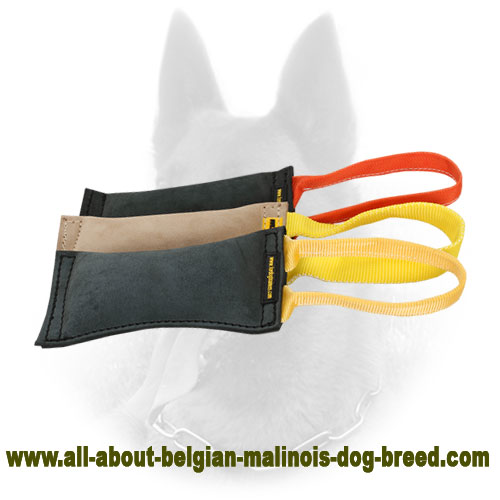 Leather Belgian Malinois Bite Tug for Pro Training