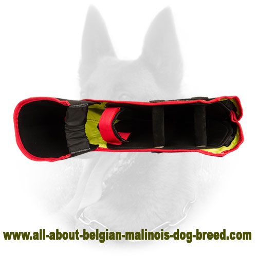 Modern Belgian Malinois Bite Sleeve of Strong Material