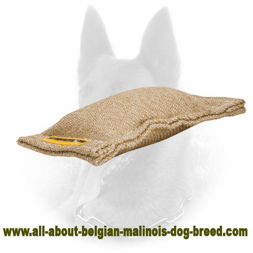 Jute Belgian Malinois Bite Tag for Efficient Puppy Training