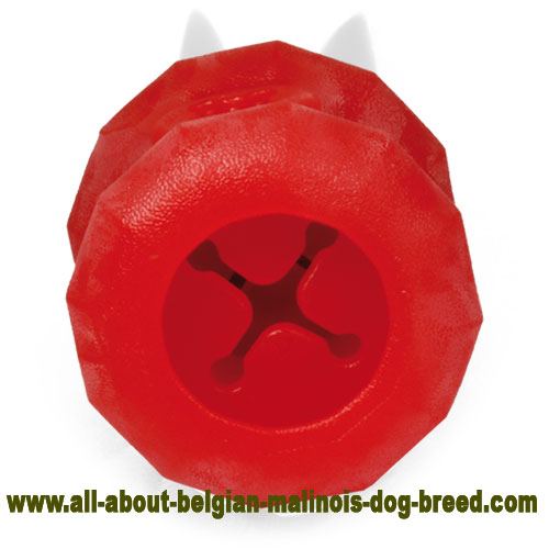 Chewing Rubber Belgian Malinois Puzzle Toy