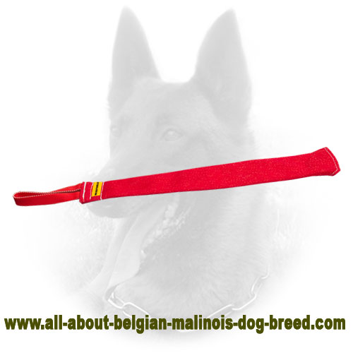 Strong Belgian Malinois Bite Rag of Hypoallergenic Material