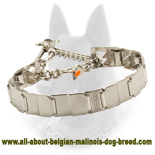 HS Belgian Malinois Collar for Behavior Correction
