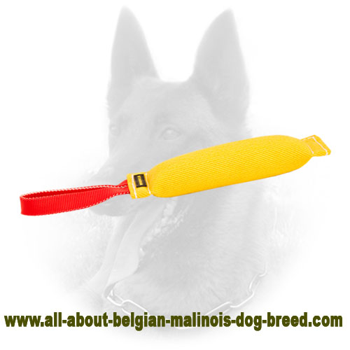 French Linen Belgian Malinois Bite Tug for Retrieve Training