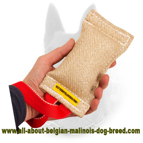 Jute Belgian Malinois Bite Tag of Safe Material