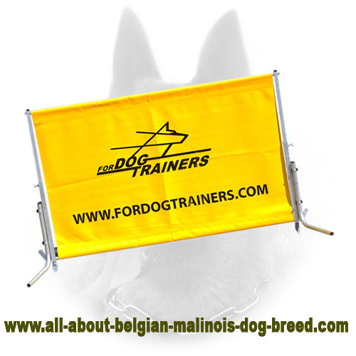 Polymer Barrier for Belgian Malinois Schutzhund Training