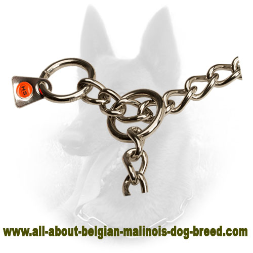 Steel Belgian Malinois Metal Collar of High-End Material