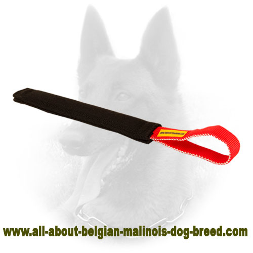 well stitched Belgian Malinois Bite Tug with Handle