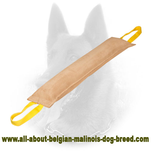 Leather Belgian Malinois Bite Tug with Comfy Handle