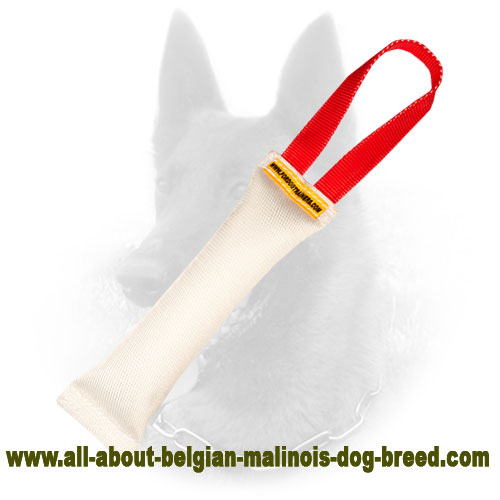 One Handle Belgian Malinois Bite Tug with Firm Stitching