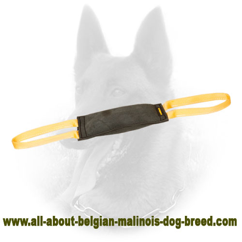 Durable Belgian Malinois Bite Tug for Advanced Training
