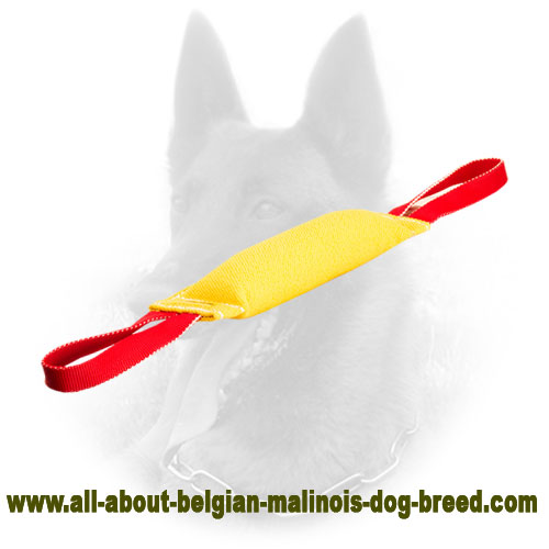 Reliable Belgian Malinois Bite Tug of French Linen Material