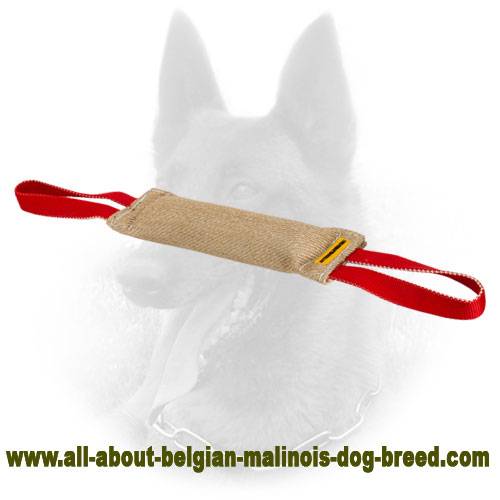Jute Belgian Malinois Bite Tag for Efficient Training