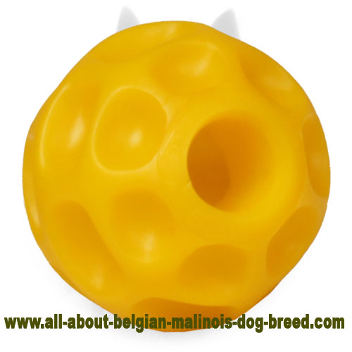 High-End Belgian Malinois Tetraflex Ball for Interactive Activity