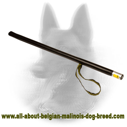 Unmatchable Belgian Malinois Leather Covered Stick