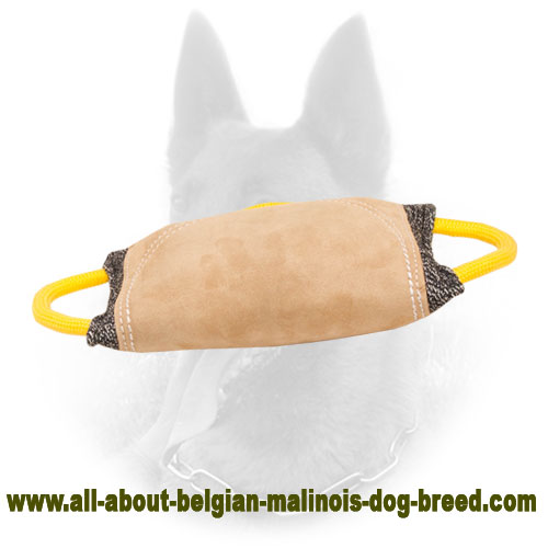 Firmly Stitched Belgian Malinois Bite Pad for Training